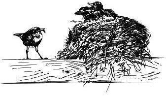 Васюткино озеро. С вопросами и ответами для почемучек